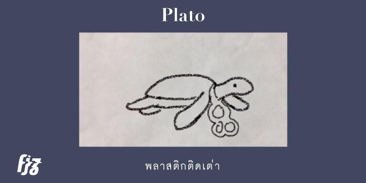 พลาสติกติดเต่า Plato